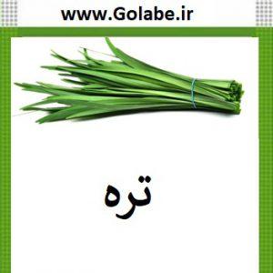بذر تره سبزی