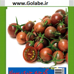 بذر گوجه گیلاسی ترش