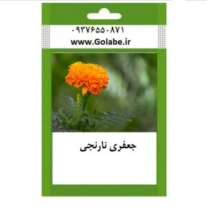 بذر گل جعفری