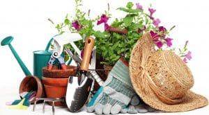 لوازم باغبانی و ابزارآلات گلابی