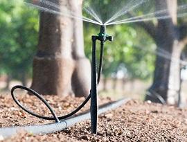 آموزش نصب میکروجت آبیاری بارانی